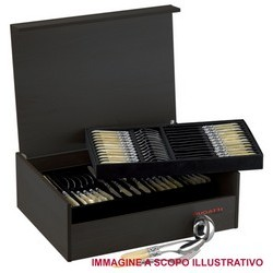Flatware Set Model CRISTALLO (ghiera dorata) - Set 75 pieces