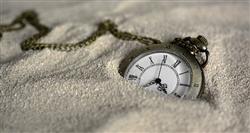 Howard Line - Single Watch Roll - Grey