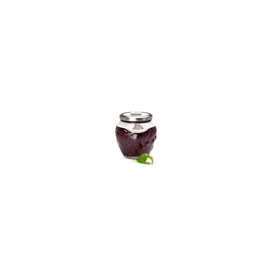 photo 600g fruit Jam - CRANBERRY - Handmade In Italy