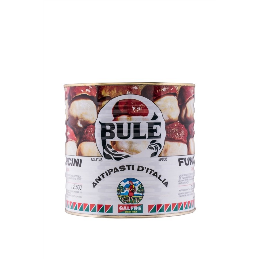 Large Consumers - Porcini Mushrooms in oil Tin Bulè kg. 2.5 - Italian Artisan Product