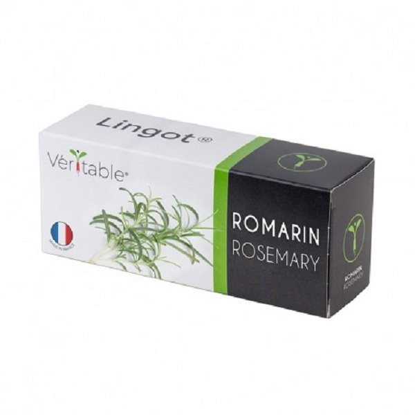 4 packs of Rosemary - Compatible with all Types of Garden Veritable