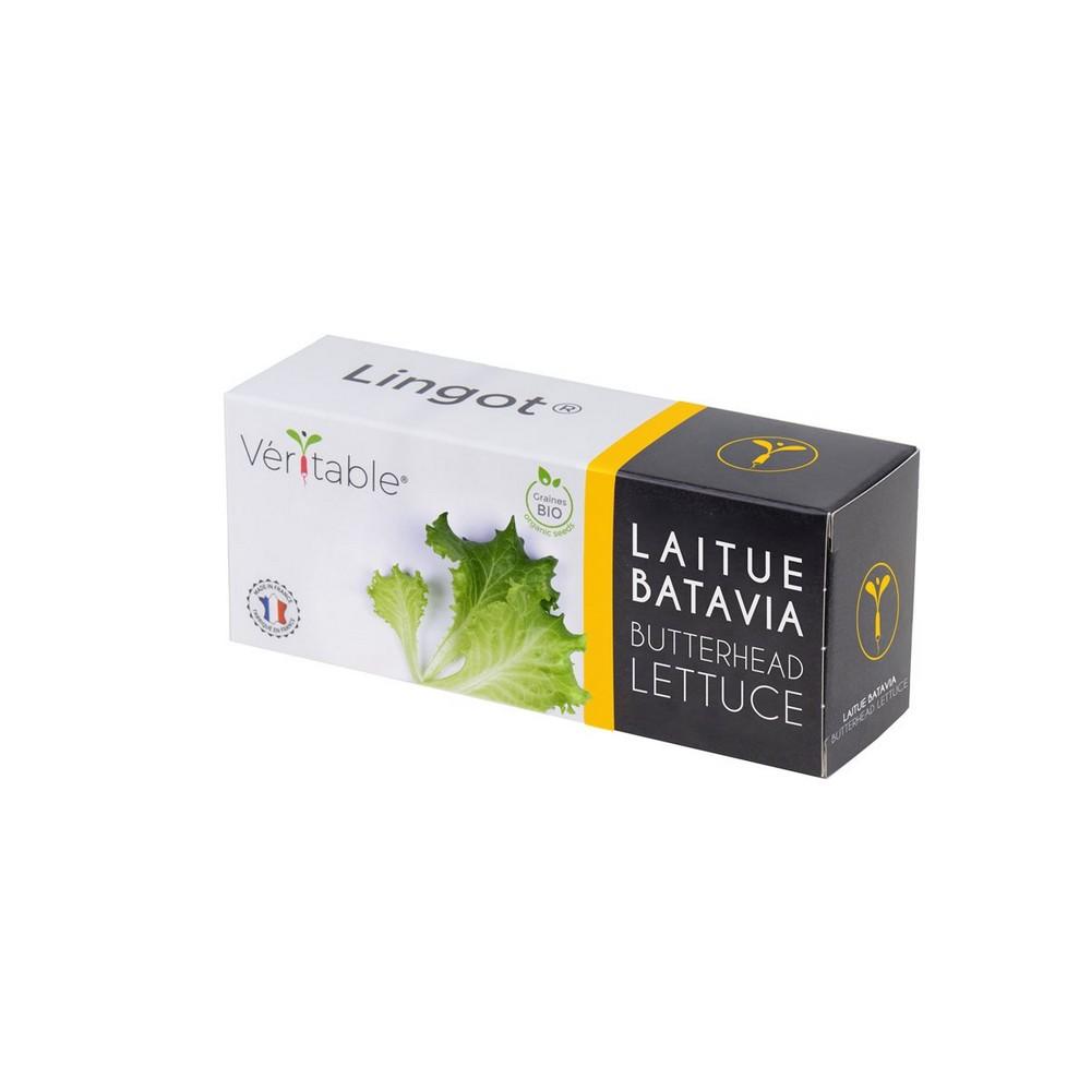 4 Packungen Lingot® Kopfsalat BIO - Kompatibel mit allen Gartentypen