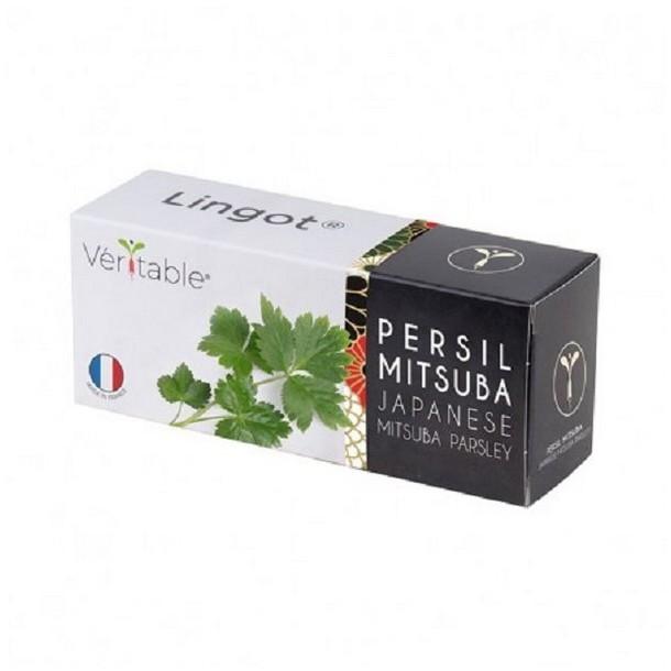4 confezioni di Prezzemolo Giapponese Mitsuba - Compatibile con tutti i tipi di Garden Veritable