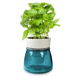 LIVANA HOME Self-Watering Herb Pot Grey - Organic Irrigation System - Colour Petrol