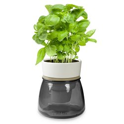 LIVANA HOME Self-Watering Herb Pot Grey - Organic Irrigation System - Colour Grey