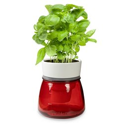 LIVANA HOME Self-Watering Herb Pot Grey - Organic Irrigation System - Colour Red
