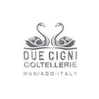 logo DUE CIGNI