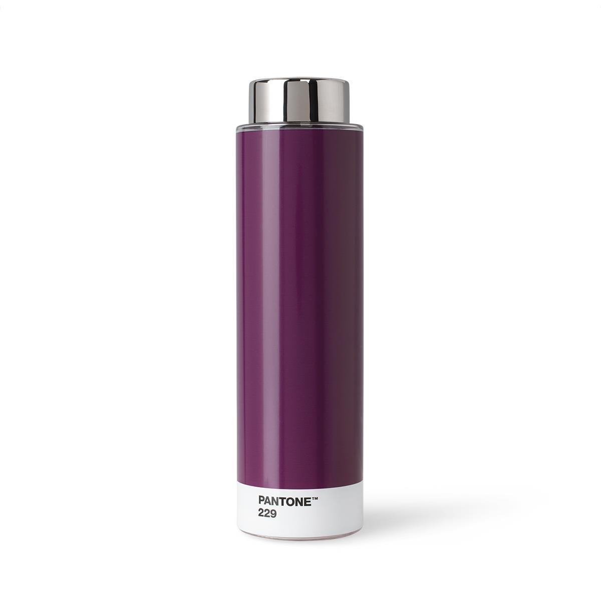 Borraccia Tritan - 500 ml - Acciaio Inossidabile - Viola Melanzana 229 - Set da 6 Pezzi