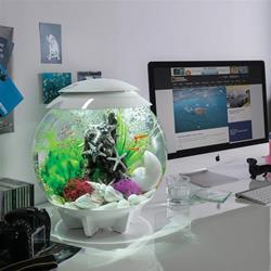 Oase Reef One - Biorb HALO 30 LED - 30Lt - 3D Effect - White