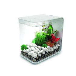 Oase Biorb FLOW 30 LED - 39cm x 26cm x 38cm - White