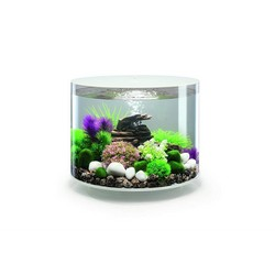 Oase Biorb TUBE Aquarium