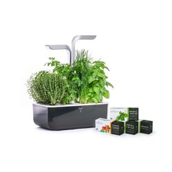 SMART Garden Dark Gray - Autoadjustment LED based on Ambient Light - Kit of 4 Seeds Included